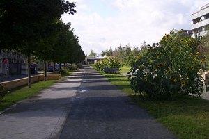 sanierungsgebiet wederstraße, neukölln,autobahndeckel,wederpark