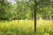 comeniusgarten, berlin-neukölln, henning vierck