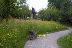 comeniusgarten, neukölln, johann amos comenius, henning vierck