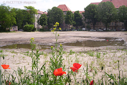 sportplatz innstraße, kampfmittelräumung, neukölln