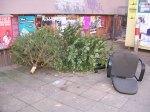 weihnachtsbäume, stuhl, give box neukölln, vermüllung