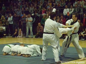 sportlergala neuköllner meisterehrung 2011, bezirkssporthalle werner-seelenbinder-sportpark neukölln, taekwondo tc sidsteps