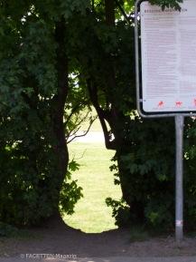 schlupfloch allerstraße, eingänge oderstraße tempelhofer feld