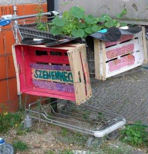 rollende gärten, bepflanzte einkaufswagen, qm ganghoferstraße-projekt