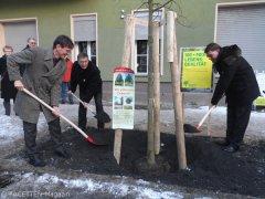 gaebler+blesing+brodersen_stadtbaumkampagne neukölln