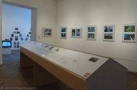 roma image studio_galerie im saalbau_neukölln