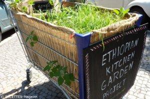 2_ethopian kitchen garden_neukölln