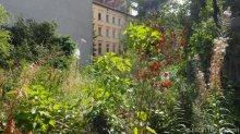 1_garten cafe botanico neukölln