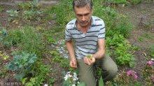 martin hoefft_garten cafe botanico neukölln