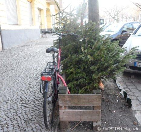 weihnachtsbaum-entsorgung_neukölln