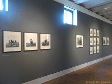 3_kühe in europa_museum neukölln