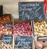 2_kartoffeln_kartoffel-planet_schillermarkt neukölln