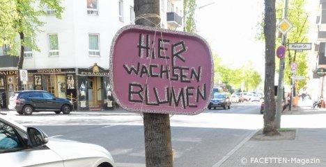 hier wachsen blumen_baumscheibe flughafenstraße neukoelln
