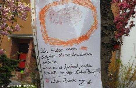 stofftier-meerschwein verloren_neukoelln-britz