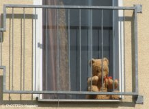 ausgesperrter teddy_neukölln