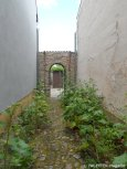 15_offene gärten 2014_kirchgasse_berlin-neukoelln