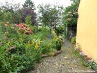 3_offene gärten 2014_kirchgasse_berlin-neukoelln