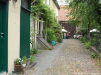 6_offene gärten 2014_kirchgasse_berlin-neukoelln