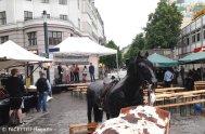 europafest2014_alfred-scholz-platz neukölln