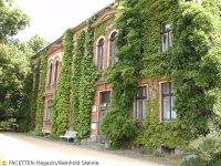 späth-arboretum herrenhaus_berlin-treptow