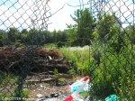 kleingartenkolonie hand in hand_campus rütli_neukölln