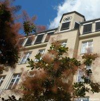rütli-schule_campus rütli_neukoelln