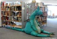 kinderbücherei_stadtbibliothek neukölln