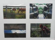 n+fotowettbewerb2015_bürgerstiftung neukölln_neuköllner leuchtturm
