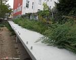 barrierefreier zugang_sporthalle hertabrücke neukölln