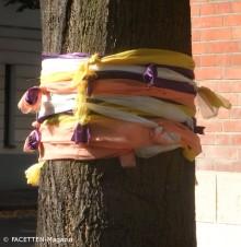 straßenbaum-sommerschmuck_neukölln