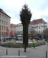 weihnachtsbaum_rathaus neukölln