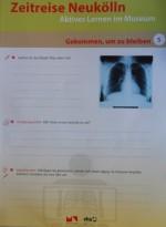 thorax-arbeitsblatt zeitreise neukoelln_vhs nk_museum nk