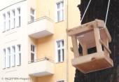 saniertes wohnhaus_vogelhaus_neukoelln