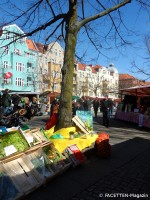 bio-bauer klaus_die dicke linda-wochenmarkt_neukoelln