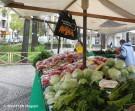 neuköllner markttaschen_rixdorfer wochenmarkt_neukoelln