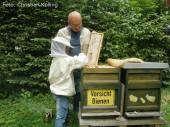 ritter_kind_sanfte bienen_vivantes neukoelln
