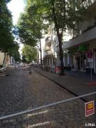 noerdliche Straßenseite_BWB Baumfällungen Weserstr Neukoelln