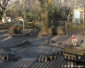 entengehege_tierpark-neukoelln