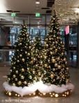 weihnachtsbaeume_neukoelln-arcaden